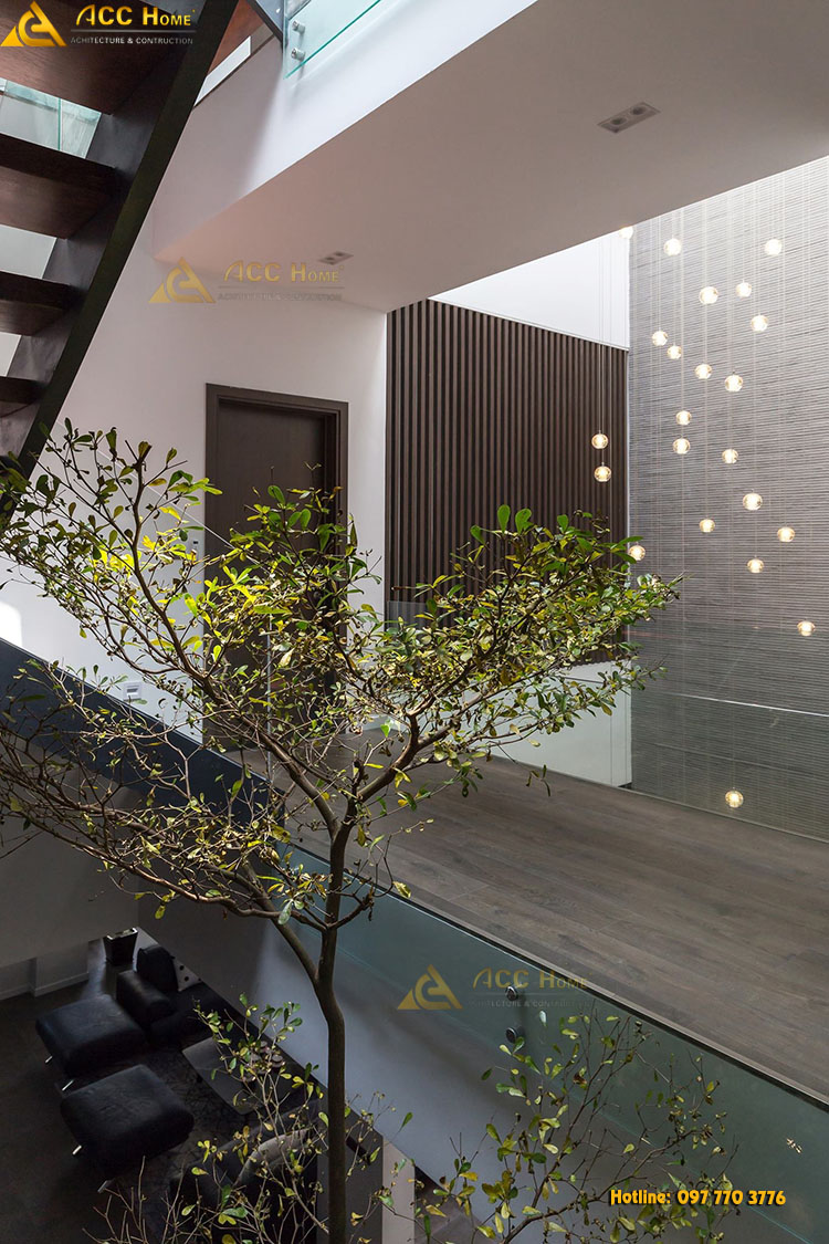 Cây xanh được trông trong nhà