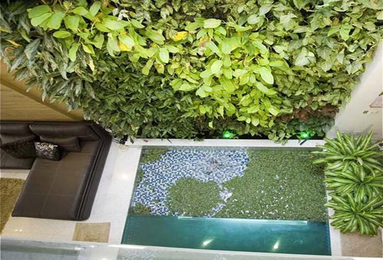 Sắp đặtao hồ bên trong sân vườn