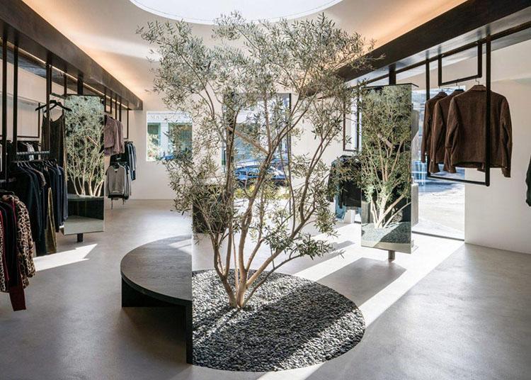 Cây xanh trang trí shop quần áo