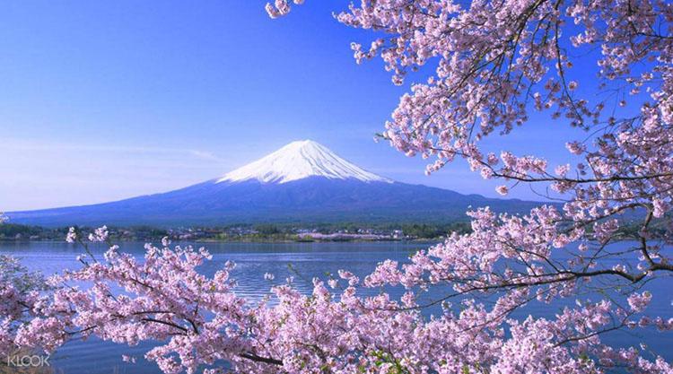 Hình ảnh đặc trưng của đất nước Nhật