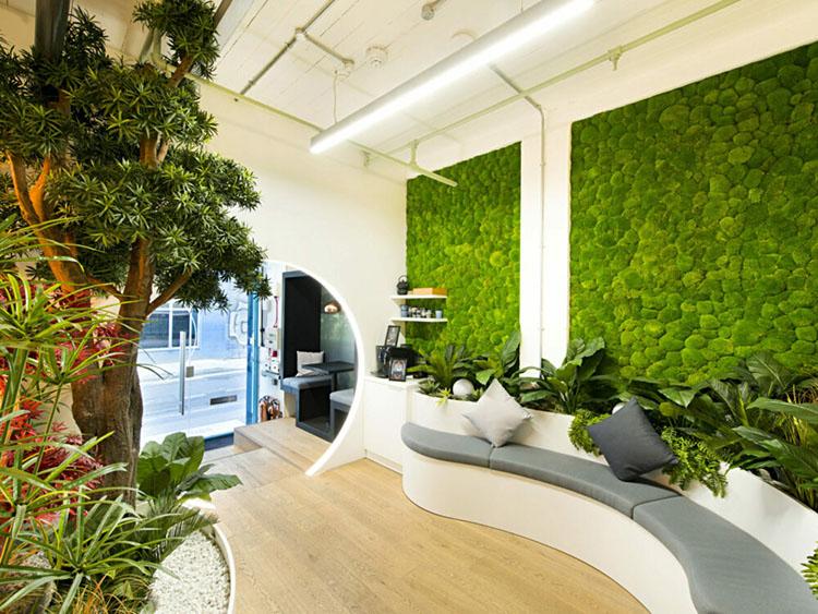 văn phòng không gian xanh